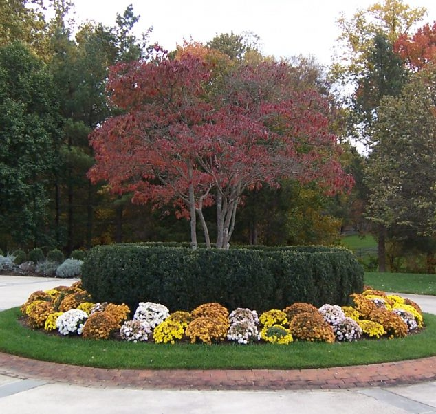 Foley-homes-exterior-landscaping-flower-arrangement-15